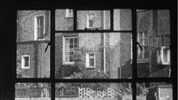 Window / Light