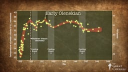 Life's Slow Recovery after the Permian