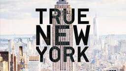True New York - Five Short Documentaries About New York