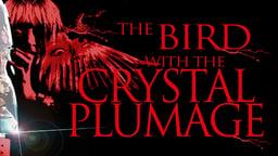 Bird With the Crystal Plumage - L'uccello dalle piume di cristallo