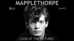 Mapplethorpe: Look at the Pictures - The Provocative Artist Who Changed Contemporary Photography