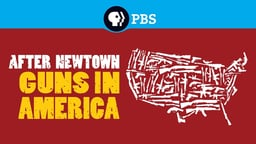 After Newtown: Guns in America - The Evolution of Guns and Violence in America