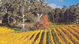 The Best of Australia and Tasmania