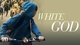 White God - Fehér isten