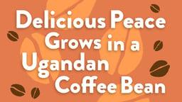 Delicious Peace Grows in a Ugandan Coffee Bean