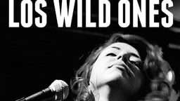 Los Wild Ones - The Musicians of Wild Records