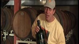 The Green Economy: Green Wine