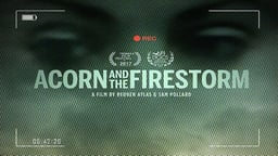 ACORN and the Firestorm - An Anti-Poverty Organization Fighting for the Voiceless