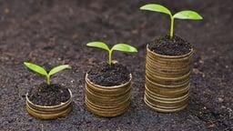 Green Economics: Living Well
