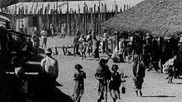 Kenya Boran Part 2