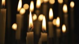 Mozart's Requiem: Praise and Memory