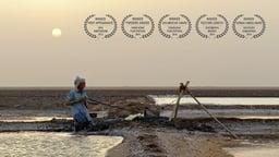 My Name Is Salt - Salt Harvesting in India