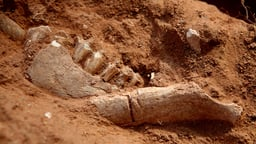 The Bones of Badger Hole