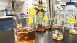 The Science of Quality Beer