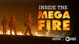 Inside the Megafire