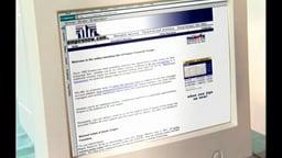 Stock Market Basics: Learning Without Losing