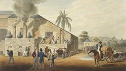 Origins of Slavery in the British Empire