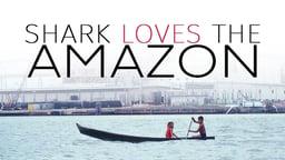 Shark Loves The Amazon
