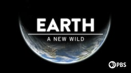 EARTH - A New Wild Series