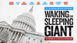 Waking the Sleeping Giant - The Making of a Political Revolution