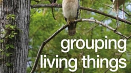 Grouping Living Things
