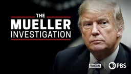 The Mueller Investigation