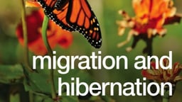 Migration and Hibernation