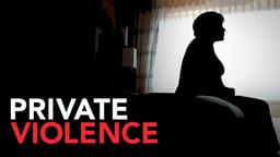 Private Violence - Domestic Violence Survivors