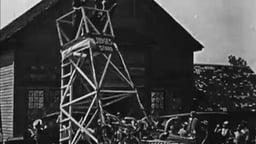Lizzies Of The Field (1924) - Mack Sennett