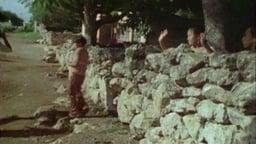 The Living Maya - Program III