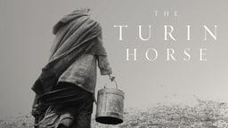 The Turin Horse - A Torinói Ló
