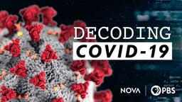 Decoding COVID-19