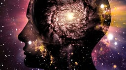 Mind, Body, and Questions of Consciousness