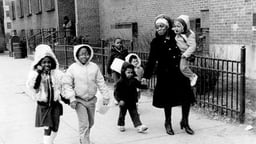 Down the Project: The Crisis of Public Housing