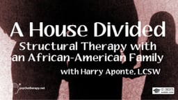 A House Divided - Structural Therapy with a Black Family with Harry Aponte
