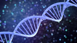 Genes, Brains, and Evolution