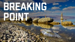 Breaking Point: The Disappearing Salton Sea