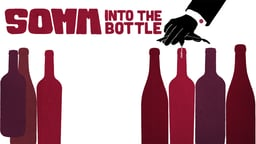SOMM: Into the Bottle - The History of Wine Through 10 Bottles