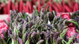 Stems and Stalks: Asparagus and Rhubarb