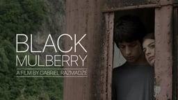 Black Mulberry - Shavi Tuta