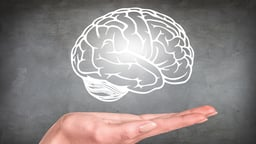 Modifying Our Brain Function and Structure