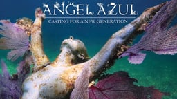 Angel Azul - An Artist Creating Artificial Coral Reef