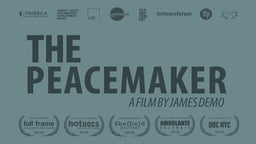 The Peacemaker - An Intimate Portrait of an International Peacemaker
