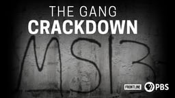 The Gang Crackdown