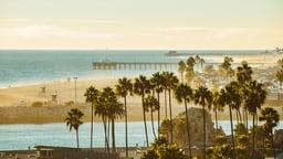 The California Avant-Garde