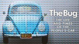 The Bug - The Life and Times of the People's Car