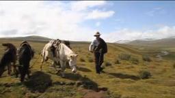Return to Summer Pasture