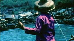 China Coast Fishing