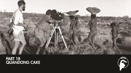 Quandong Cake