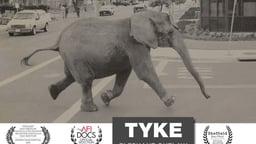 Tyke Elephant Outlaw - A Circus Elephant Who Made History